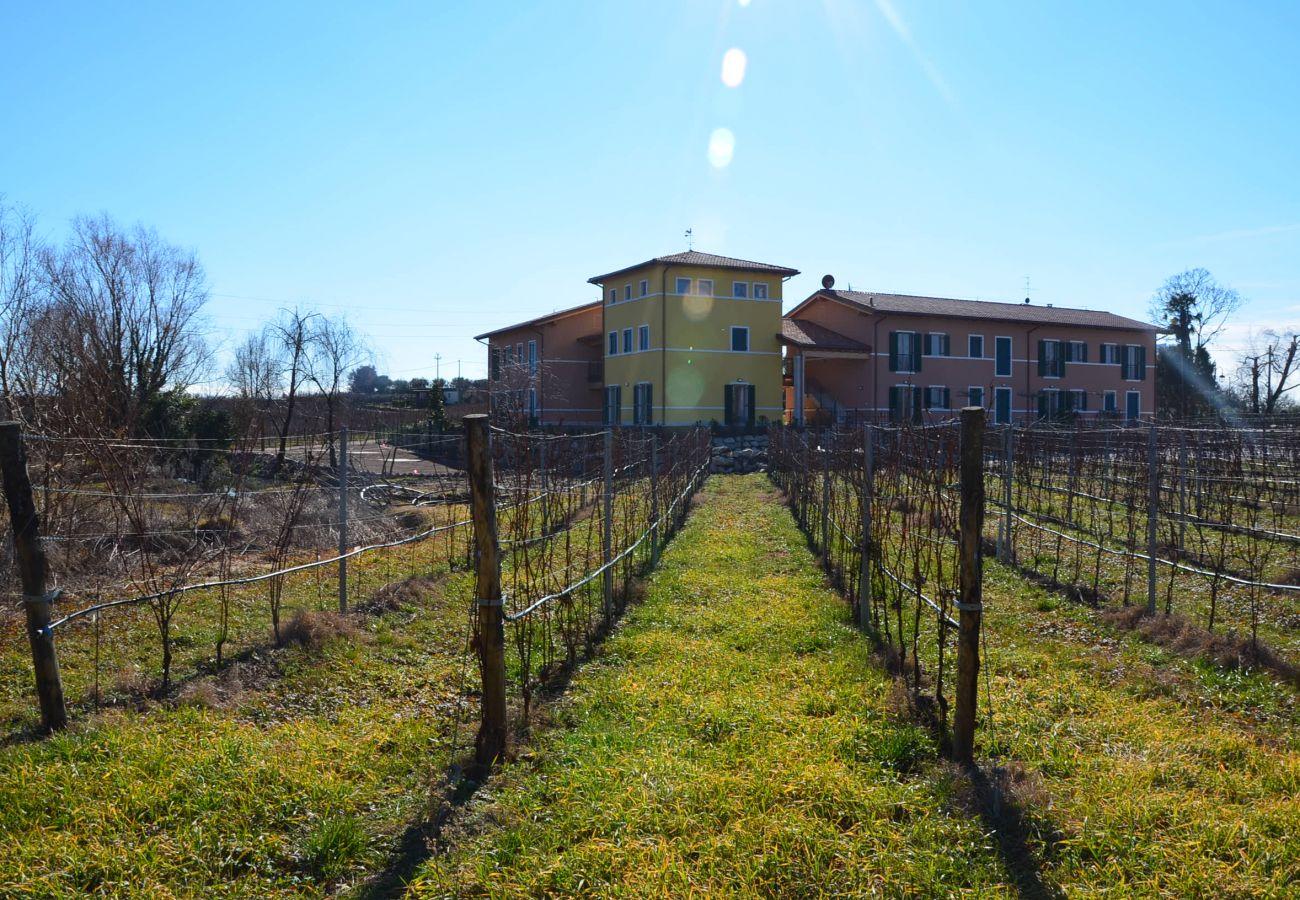 Agriturismo a Bardolino - MODERNA TENUTA  BARDOLINO IN ZONA COLLINARE CON WIFI E A/C